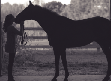 This is… Equestrian Life.